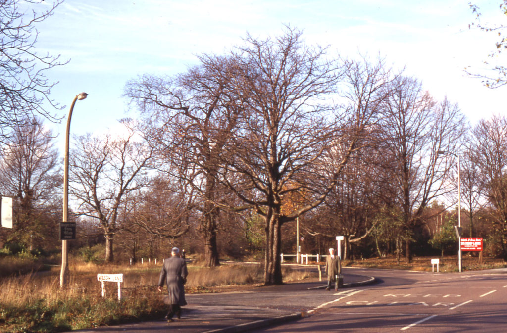 Junction Willow Lane and Carshalton Road, Mitcham, Surrey CR4. Known as Rowcrofts Corner. part of Mitcham Common.