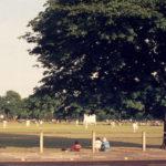 Mitcham Cricket Green, Mitcham, Surrey CR4. Midsummer. taken from London Road. looking south-east.
