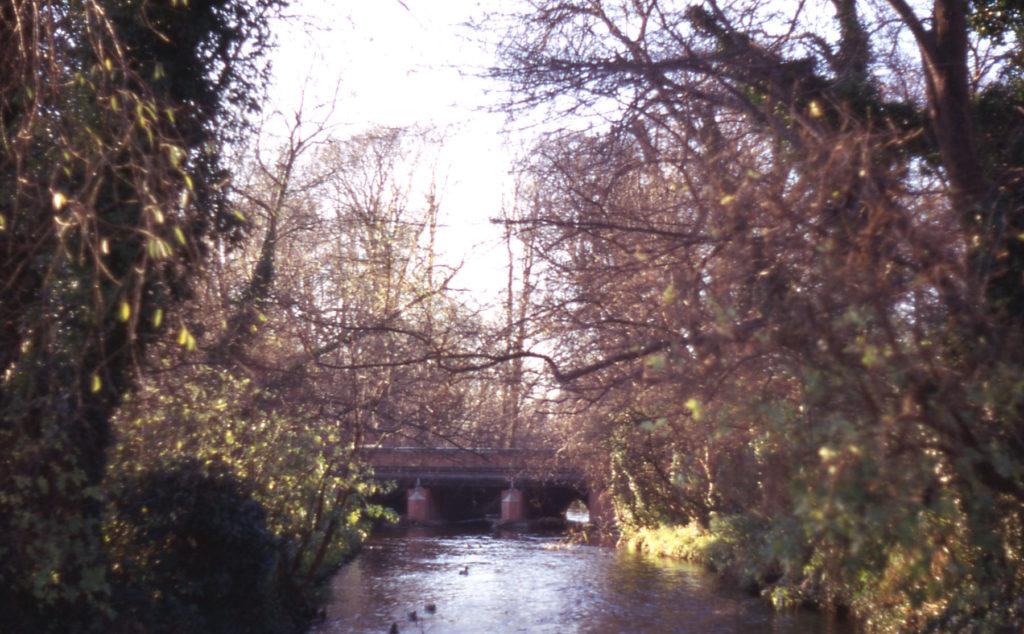 The Tail-race at Grove Mill, Mitcham, Surrey CR4. Looking towards Mitcham Bridge.