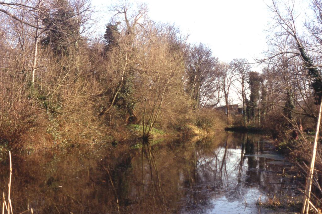 Pike Pond, the Watermeads, Mitcham, Surrey CR4.