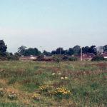Mitcham Common, Mitcham, Surrey CR4. Near Cedars Avenue.