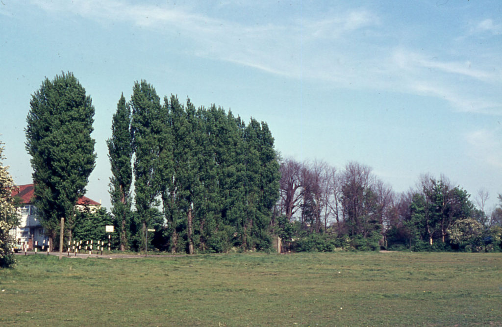 Bucking Grove Corner, Mitcham Common, Mitcham, Surrey CR4. Galpins Road.