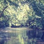 The River Wandle below Mitcham Bridge, Bishopsford Road, Mitcham, Surrey CR4. Happy Valley.