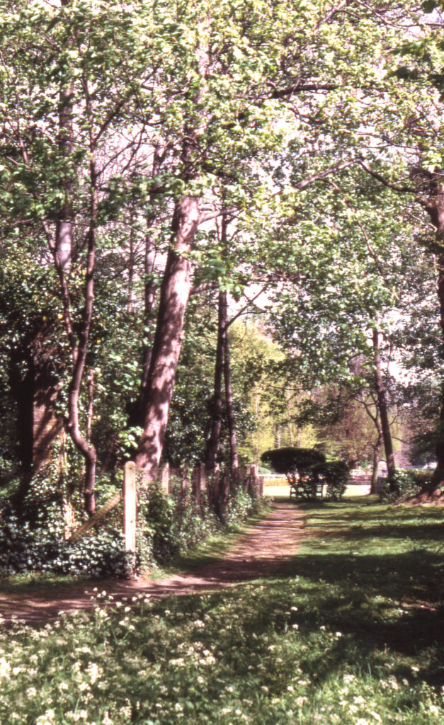 Ravensbury Park, Mitcham, Surrey CR4. Ruins at