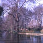 River Wandle in Ravensbury Park, Mitcham, Surrey CR4. Site of Ravensbury Manor House.