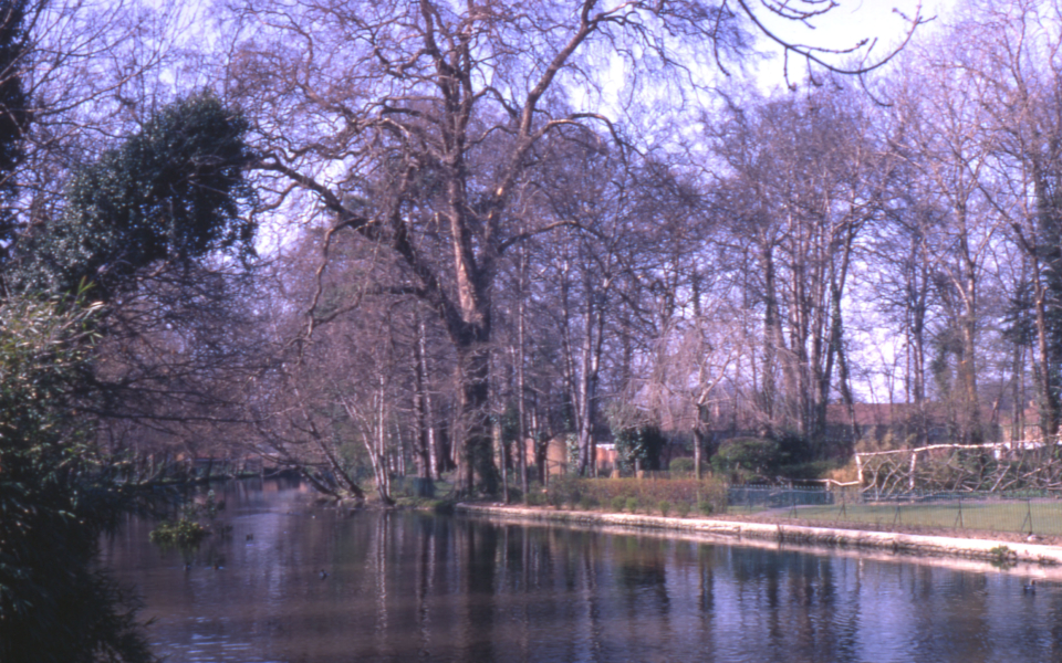River Wandle in Ravensbury Park, Mitcham, Surrey CR4. Site of Ravensbury Manor House.