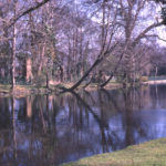 The Wandle at Ravensbury Park, Mitcham, Surrey CR4. Ruins of Ravensbury Manor House on banks of river.