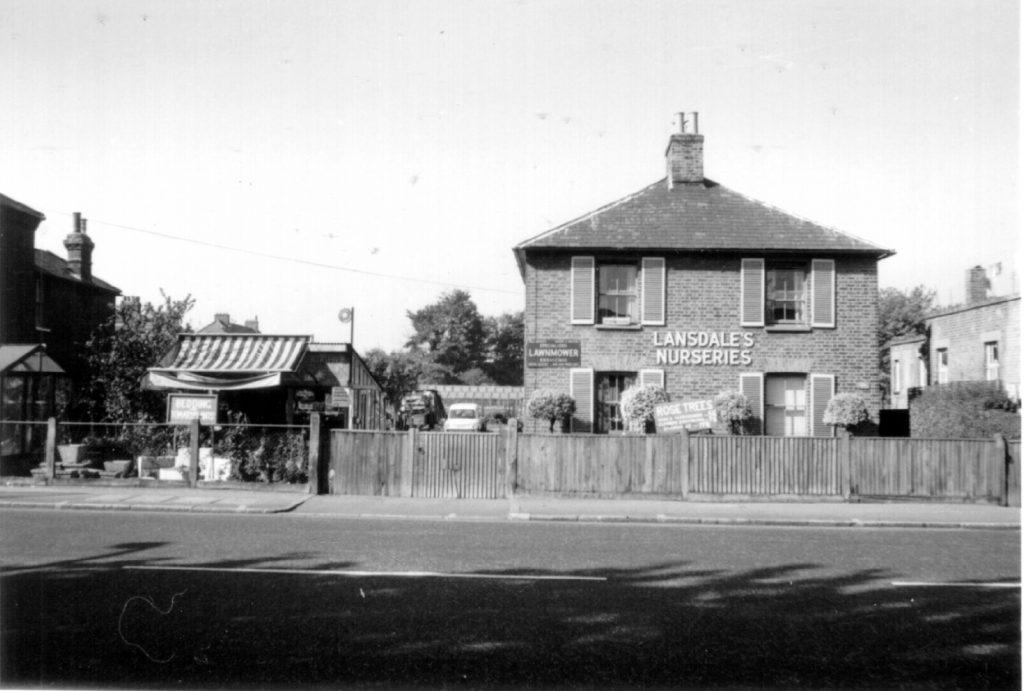 Lansdale's Nurseries, 102 Morden Rd SW19 (1970) WJR