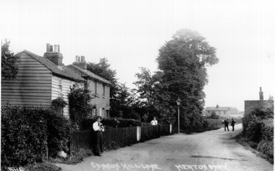 A Johns postcard of c.1920, looking south in Cannon Hill Lane. Mud Cottage is on the right.