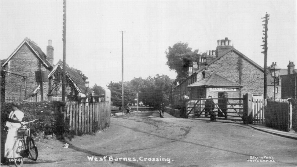 West Barnes Level Crossing. Undated postcard.